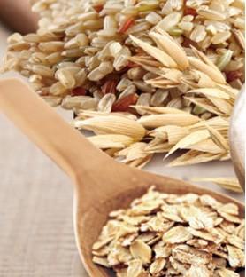 健康時代-燕麥胚芽糙米粉*無糖(600g)